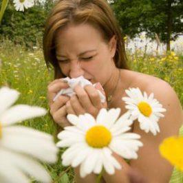 Страшнейшая аллергия на пыльцу цветущих деревьев побеждена!
