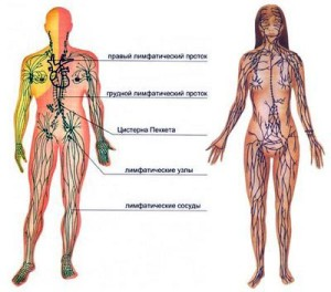 limfosarkoma