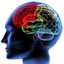 Чума 21-го века болезни мозга