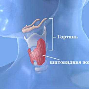 Лечение заболеваний щитовидной железы с помощью тренажера Фролова ТДИ-01