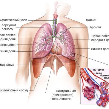 Очищение органов дыхания с помощью тренажера Фролова ТДИ-01